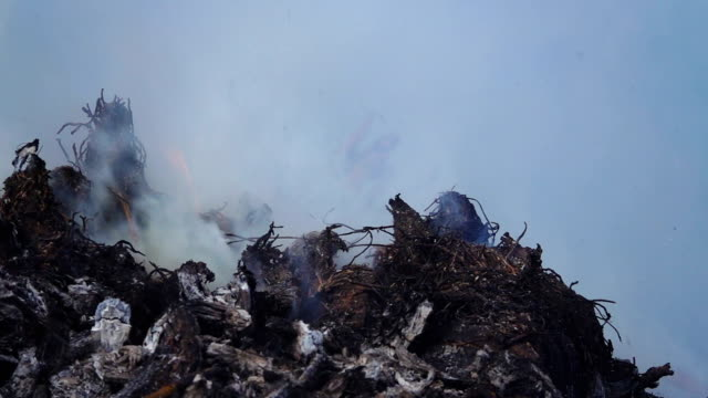 slow motion of burned garbage. - inferno stock videos and b-roll footage