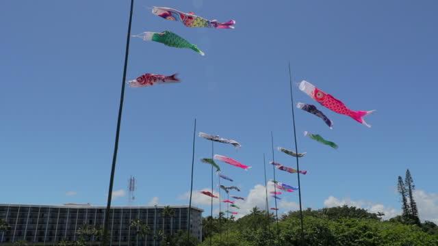 slow motion of colorful wind socks waving against blue sky on sunny day - big island, hawaii - 旗棒点の映像素材/bロール