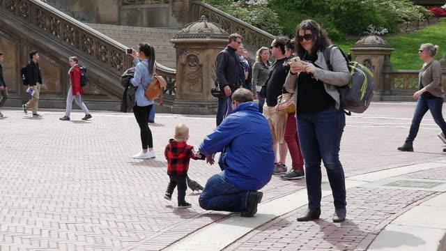 vídeos y material grabado en eventos de stock de slow motion of family having fun in central park, new york city - agarrados de la mano