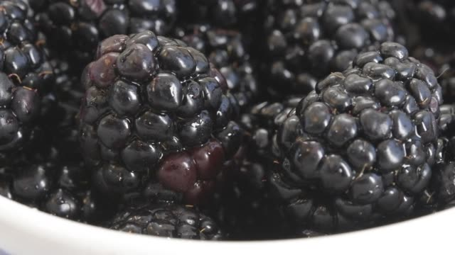 slow motion of fresh blackberries fruit falling on top of others - bowl stock videos & royalty-free footage