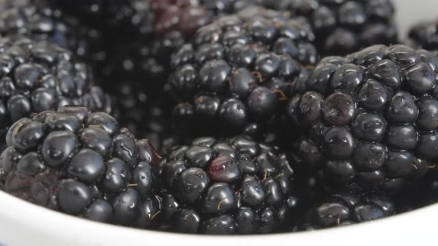 slow motion of fresh blackberries fruit falling on top of others - vitamin a nutrient stock videos & royalty-free footage
