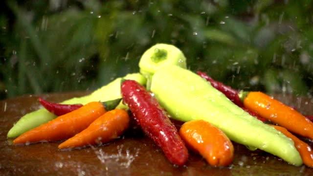 zeitlupe frisches wasser splash mit chili pfeffer - chili schote stock-videos und b-roll-filmmaterial