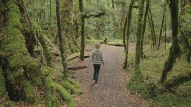 slow motion of girl walking on road amidst trees in forest - remote location stock videos & royalty-free footage