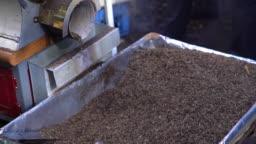 HD Slow motion of green tea leaves roasted in roasting machine. Fragrant dried japanese green tea leaf spinning in roaster.