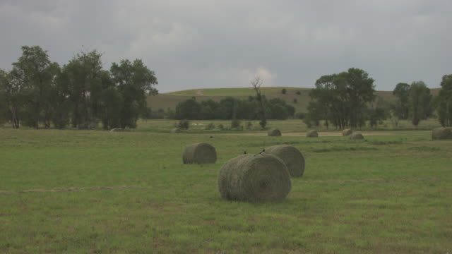 slow motion of hay bales in field - hay stock videos and b-roll footage