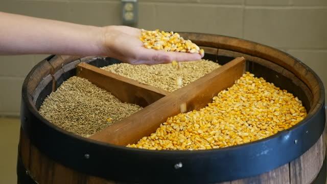 vídeos y material grabado en eventos de stock de slow motion of inspecting crop - manos ahuecadas