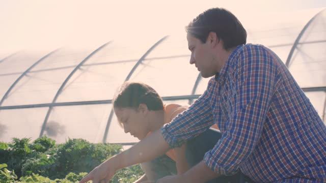 slow motion of mid adult man teaching gardening to son on sunny day - 北欧諸国点の映像素材/bロール