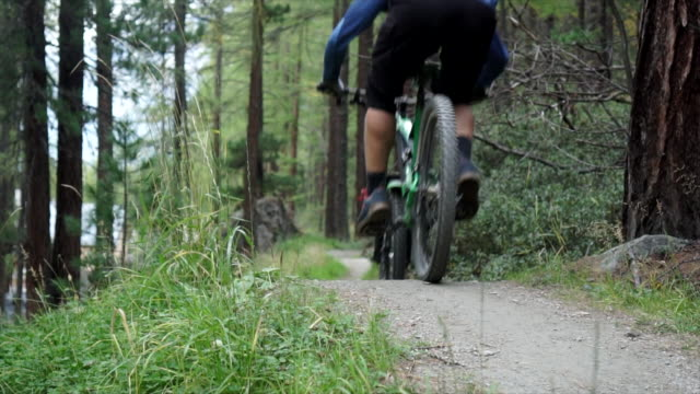 slow motion of mountain biker descending forest flow trail - andare in mountain bike video stock e b–roll