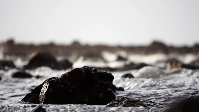 vídeos de stock e filmes b-roll de slow motion of ocean wave on sand tropical beach of thailand. - mar de andamão