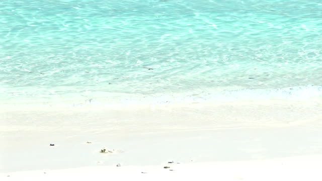 vídeos y material grabado en eventos de stock de cámara lenta de la onda de océano en la playa tropical de arena blanca de tailandia. - mar de andamán