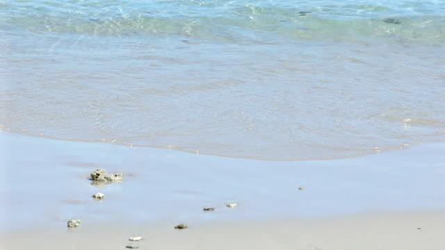 タイ熱帯白い砂浜ビーチに海の波の動き、遅い。 - パタヤ点の映像素材/bロール