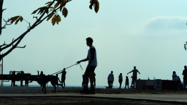vídeos de stock e filmes b-roll de slow motion of people's outdoor activities, a dog is pulling a man riding a skater amid the 2020 global coronavirus pandemic. - outdoor pursuit