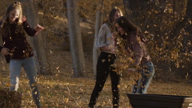 slow motion of playful girl dumping autumn leaves on friend / cedar hills, utah, united states - dreiviertelansicht stock-videos und b-roll-filmmaterial