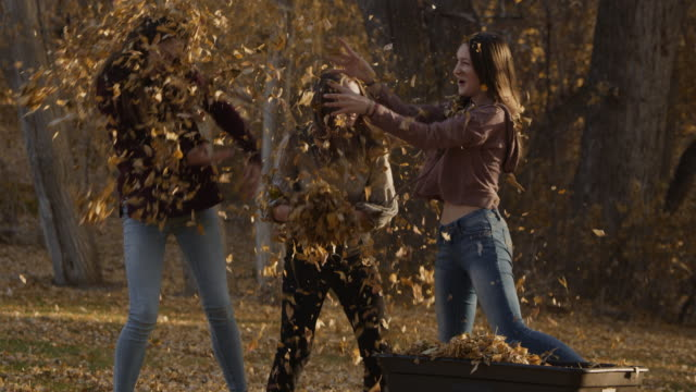 stockvideo's en b-roll-footage met slow motion of playful girls throwing autumn leaves at each other / cedar hills, utah, united states - driekwartlengte
