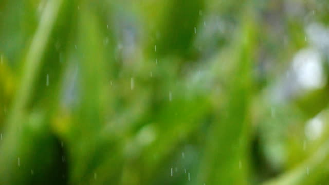 Slow motion of rain storm