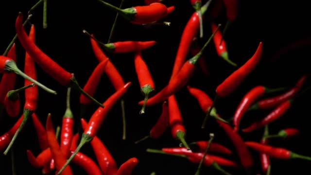 slow motion of red chilli pepper flying up to camera - pepper vegetable stock videos & royalty-free footage