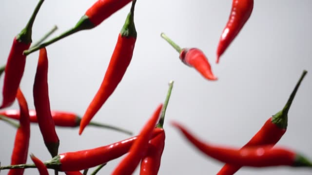 slow motion of red chilli pepper flying up - peperoncino video stock e b–roll