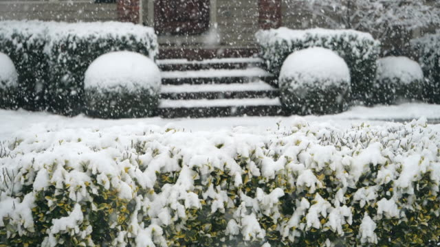 slow motion of snowing and plants around house - doorstep stock videos & royalty-free footage