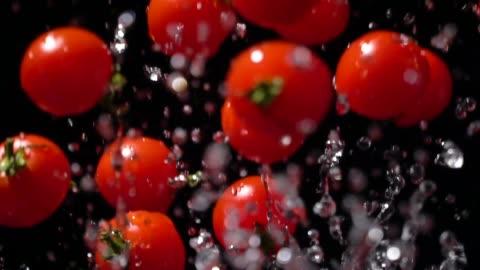 slow motion of splashing tomato flying up - still life stock videos & royalty-free footage