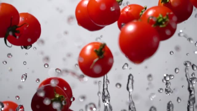 slow motion of splashing tomato flying up - tomato stock videos & royalty-free footage