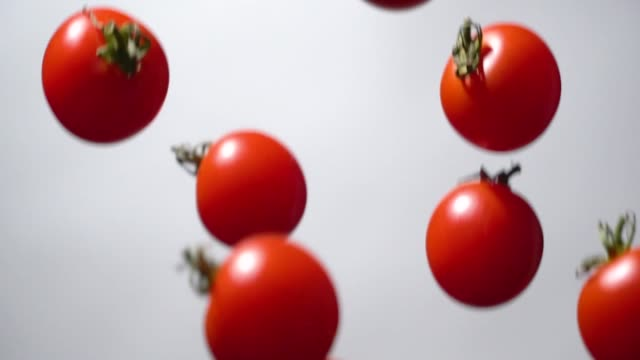 slow motion of tomato flying up - still life stock videos & royalty-free footage