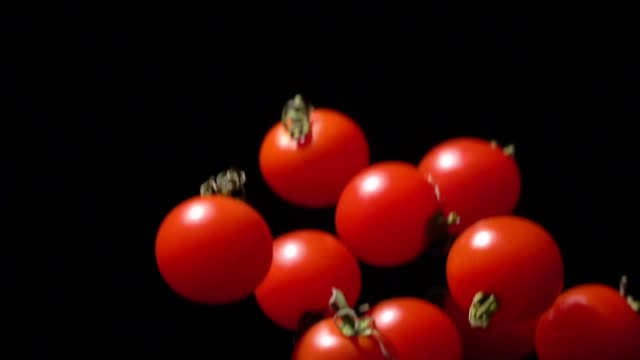 slow motion of tomato flying up - tomato stock videos & royalty-free footage