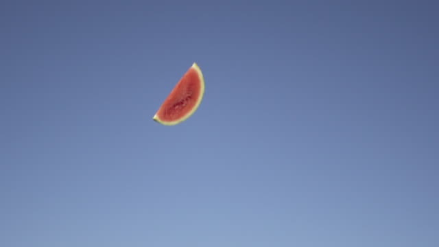slow motion of tossing fruit watermelon  into sky - still life stock videos and b-roll footage