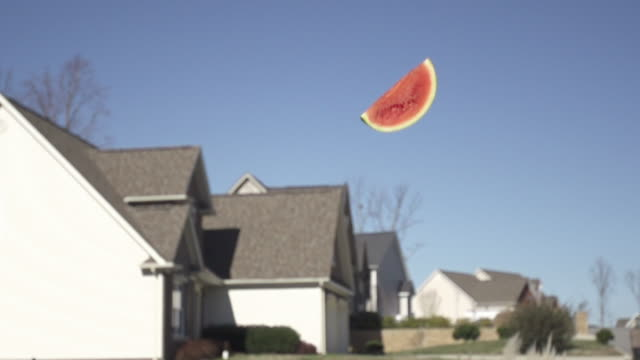slow motion of tossing fruit watermelon into sky with homes behind - still life stock videos and b-roll footage