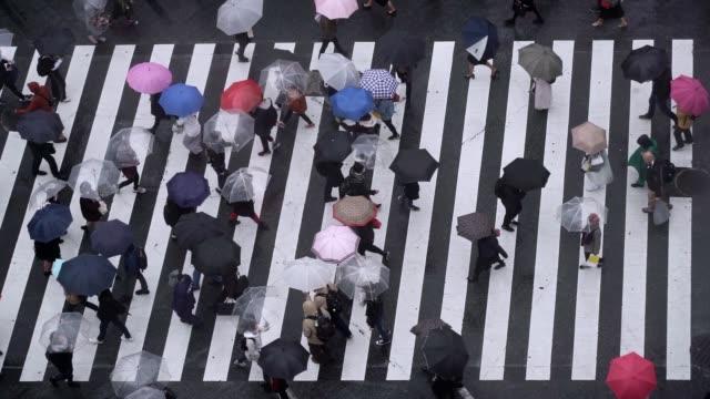 slow motion of tourist pedestrian überfüllt in shibuya, japan. - besichtigung stock-videos und b-roll-filmmaterial
