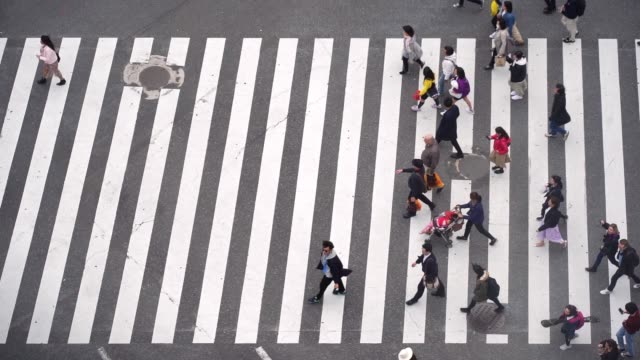 slow motion of tourist pedestrian crowded in shibuya , japan. - zebra crossing stock videos & royalty-free footage