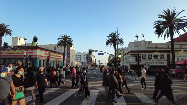 slow motion of tourists crossing street on hollywood boulevard - tropical tree stock videos & royalty-free footage