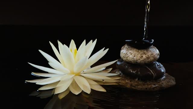 slow motion dell'acqua che cade vicino a bilanciere pietre di ciottoli e fiore di ninfea di loto - spa video stock e b–roll