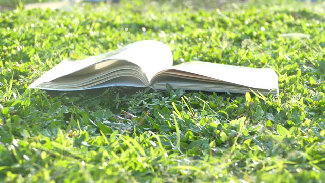 slow motion di pagine di libri bianchi che girano. - letteratura video stock e b–roll