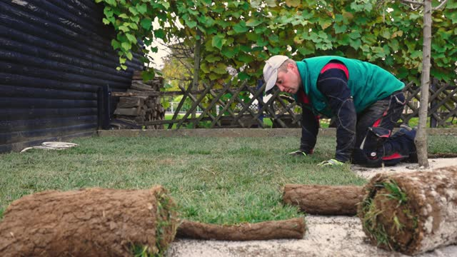 vídeos y material grabado en eventos de stock de cámara lenta de trabajador poniendo el césped para nuevo césped - hierba familia de la hierba