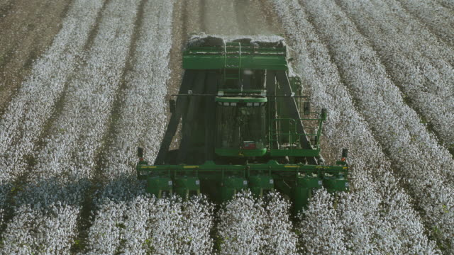 slow motion orbit around mechanical cotton picker - agricultural machinery stock videos and b-roll footage