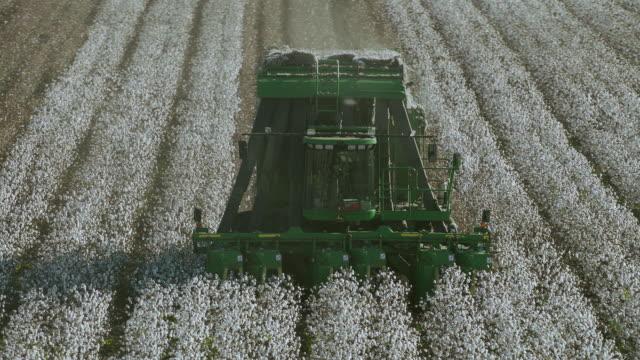 vídeos y material grabado en eventos de stock de slow motion orbit around mechanical cotton picker - cotton