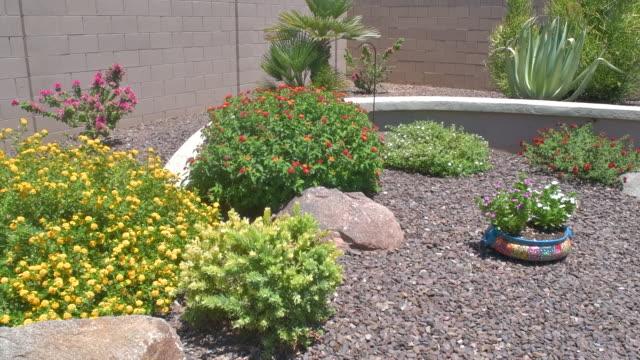 slow motion pan of an arizona backyard garden in hd - landscaped stock videos & royalty-free footage