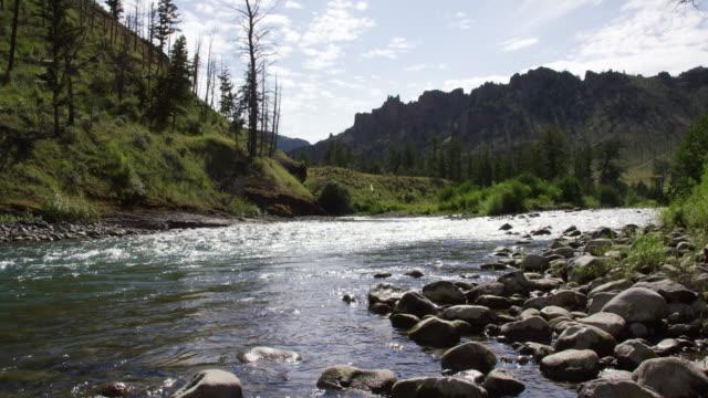 コーディのノースフォークショショーン川を流れる水のスローモーションパンニングショット、晴れた日にロッキー山脈を背景にワイオミング州 - 国有林点の映像素材/bロール