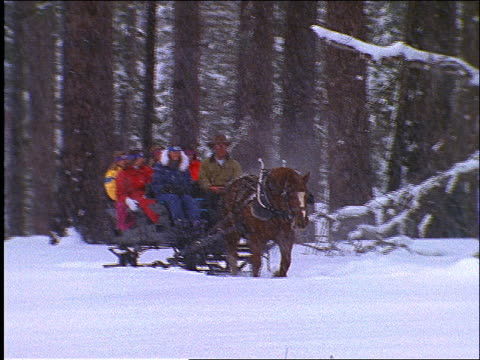 slow motion people riding in horse-drawn sleigh in snow