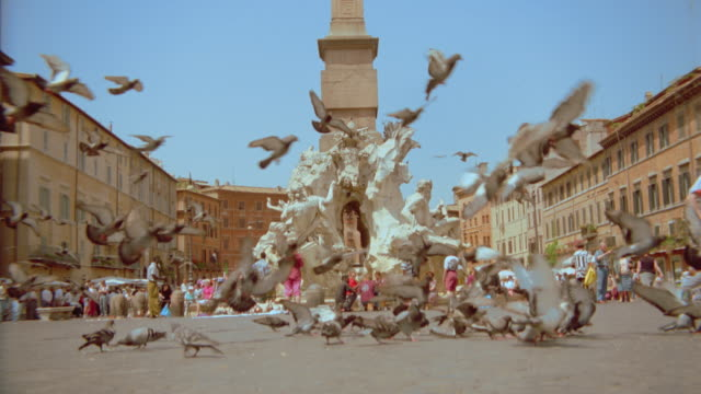 slow motion pigeons landing near fountain in plaza / Rome / Fontana dei Fiumi / Piazza Navona