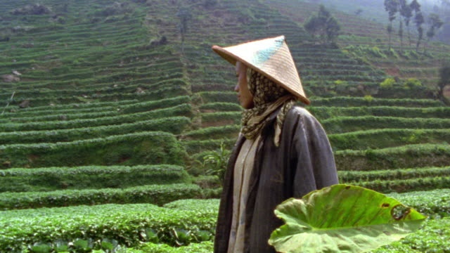 slow motion ms portrait asian woman with triangular hat / lush terraced hill in background / dieng, java, indonesia - malaysian ethnicity stock videos & royalty-free footage