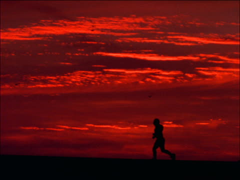 stockvideo's en b-roll-footage met slow motion profile silhouette woman jogging past camera at sunset / santa monica, california - jogster