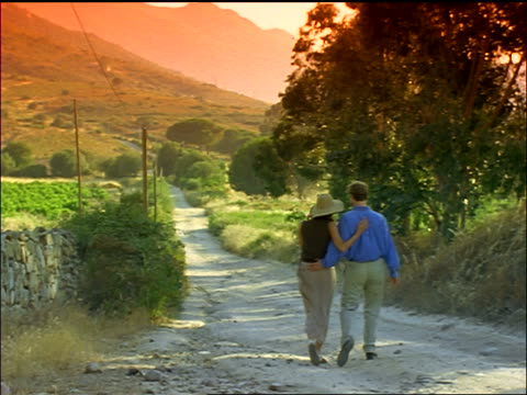 stockvideo's en b-roll-footage met filter slow motion rear view couple walking together on dirt road toward hills / france - zij aan zij