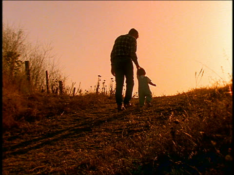 slow motion rearview of man and small boy walking up grassy hill / man picks up boy / late afternoon - family with one child stock videos & royalty-free footage