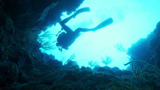 slow motion: scuba diver exploring cave in sea - belize city, belize - aqualung diving equipment stock videos & royalty-free footage