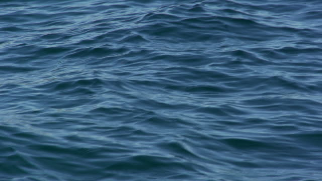 vídeos de stock e filmes b-roll de slow motion: sea water surface - silêncio