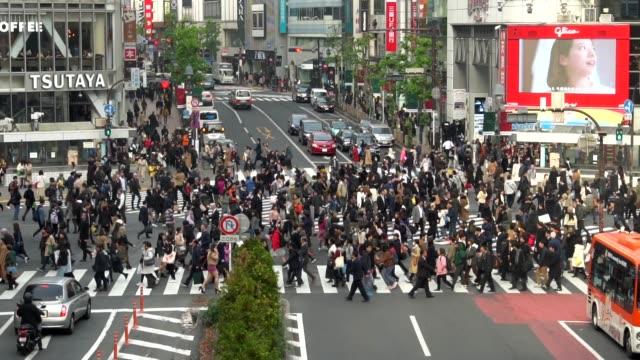 vídeos de stock, filmes e b-roll de câmera lenta: cruzamento de shibuya, tóquio - sinais de cruzamento