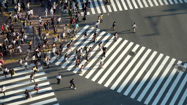 slow motion - shibuya crossing - chaos stock videos & royalty-free footage
