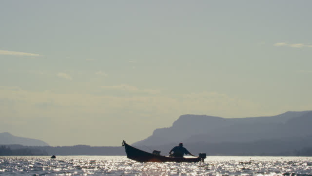 slow motion shot a silhouetted man steering his boat in the columbia river while fishing in washington on a sunny day - canna da pesca video stock e b–roll