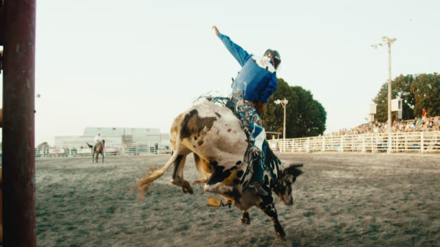 stockvideo's en b-roll-footage met slow motion shot from inside an animal pen of a latino bull rider competing in a bull riding event before being thrown from the bull's back while the rodeo clown distracts the bull in a stadium full of people at sunset - cowboyhoed